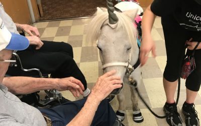 Unicorn Makes an Uplifting Visit, Spreading Joy at Cedar Haven