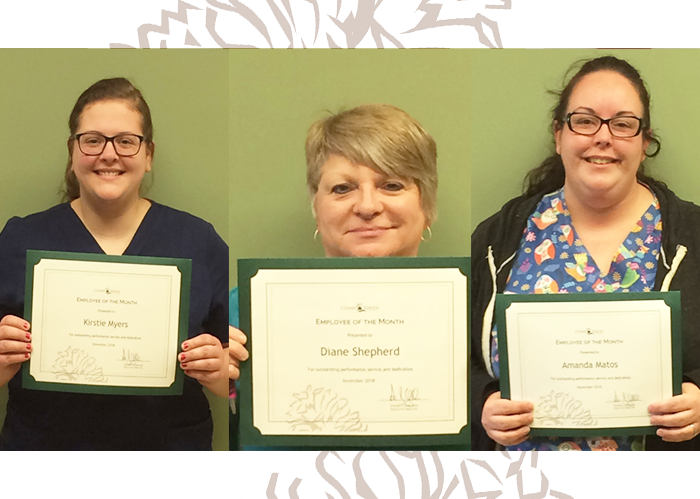 Congratulations November Employee of the Month Award Winners!